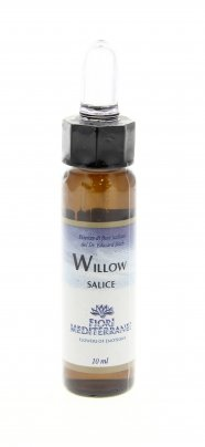 Willow - Salice - Fiori Mediterranei 10 ml.